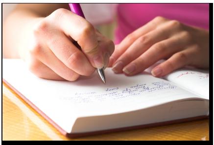 Essay diary